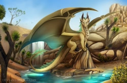 Size: 1280x834 | Tagged: source needed, useless source url, safe, artist:deviantsoulmates, western dragon, color:bronze, mountain, sea, solo