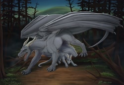 Size: 1280x886 | Tagged: source needed, useless source url, safe, artist:zirc, western dragon, color:silver, forest, night