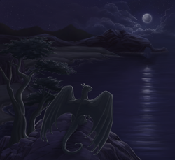 Size: 1200x1100 | Tagged: source needed, useless source url, safe, artist:zirc, western dragon, color:black, forest, mountain, night, sea, solo
