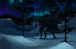 Size: 1280x832 | Tagged: source needed, useless source url, safe, artist:jadedragoness, western dragon, color:black, feathered wings, forest, night, solo, winter