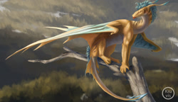 Size: 1280x736 | Tagged: source needed, useless source url, safe, artist:kruvis, western dragon, color:bronze, forest, furry, mane, mountain, multicolor:blue, river, sitting, solo, tree