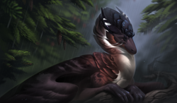 Size: 3750x2196 | Tagged: source needed, useless source url, safe, artist:kdromka, western dragon, color:bronze, feathered wings, forest, fur, multicolor:black, multicolor:white, sitting, solo